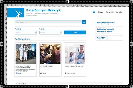 Portfolio Sidnet Instytut Badań Edukacyjnych Projekt graficzny